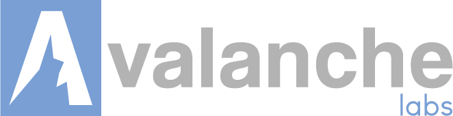 Avalanche-lans